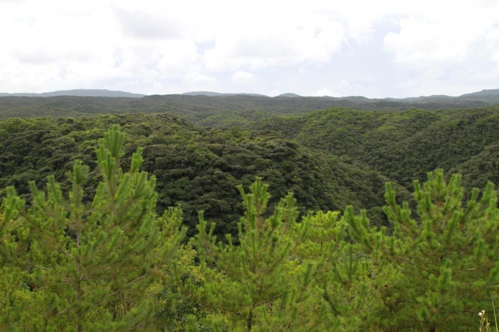 Les montagnes de l'Ile d'Okinawa dans images yanbaru